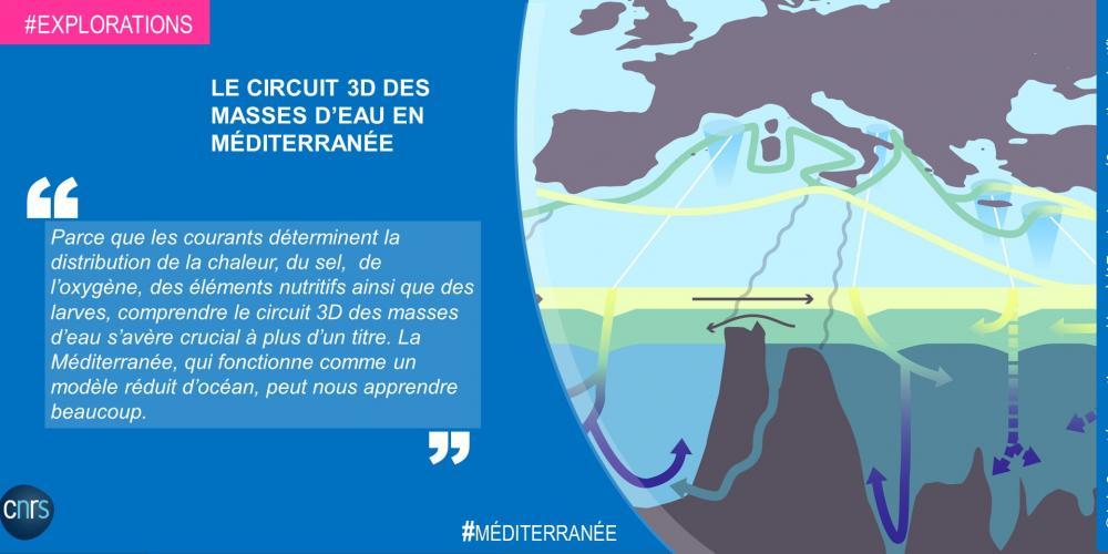 Le circuit 3D des masses d'eau en Méditerranée