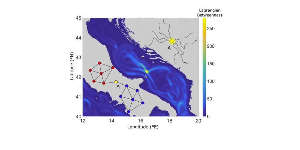 Identify bottlenecks as hubs of the ocean circulation transport system