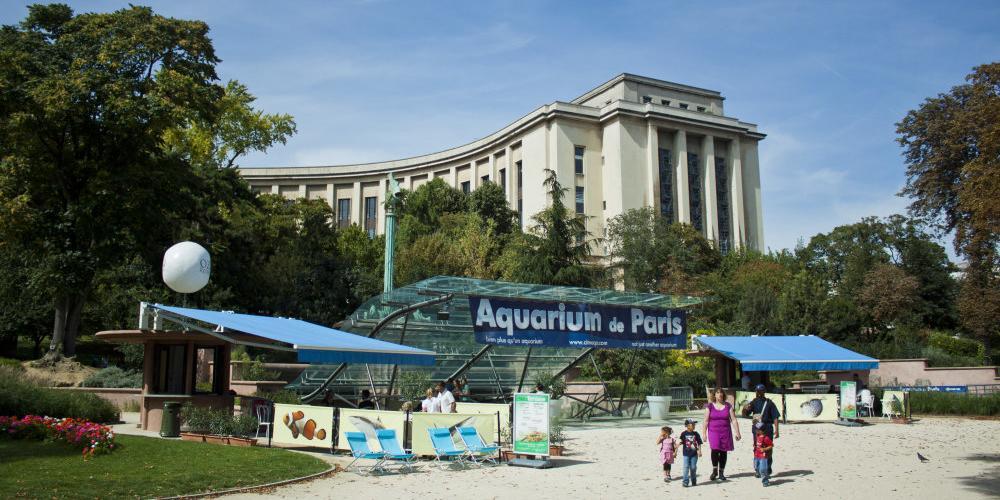 L'Aquarium de Paris lance un nouveau cycle de conférences scientifiques « Les après-midi du plancton »