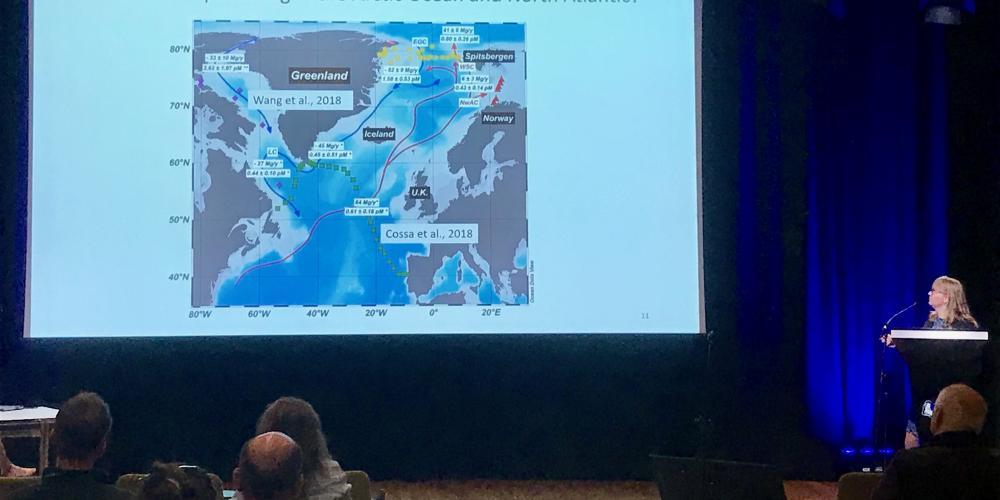 Le MIO présent à la 14e Conférence internationale du mercure en tant que polluant mondial (ICMGP) à Cracovie