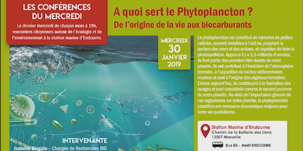 A quoi sert le Phytoplancton ? De l'origine de la vie aux biocarburants - La bande annonce