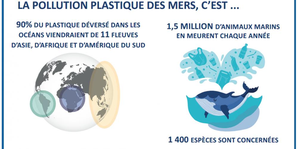 Le plastique dans la chaîne alimentaire, du plancton jusqu'à l'homme