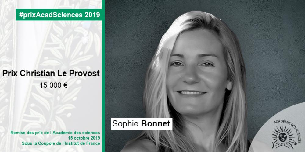 """Grand Prize in Oceanography """"Christian Le Provost"""" 2019 : Sophie Bonnet, Research Director IRD/MIO, 7th Laureate"""