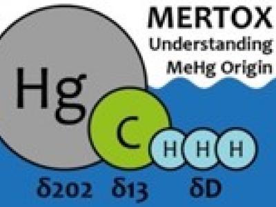 Logo MERTOX